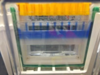 polyacrylamide gel set-up 02